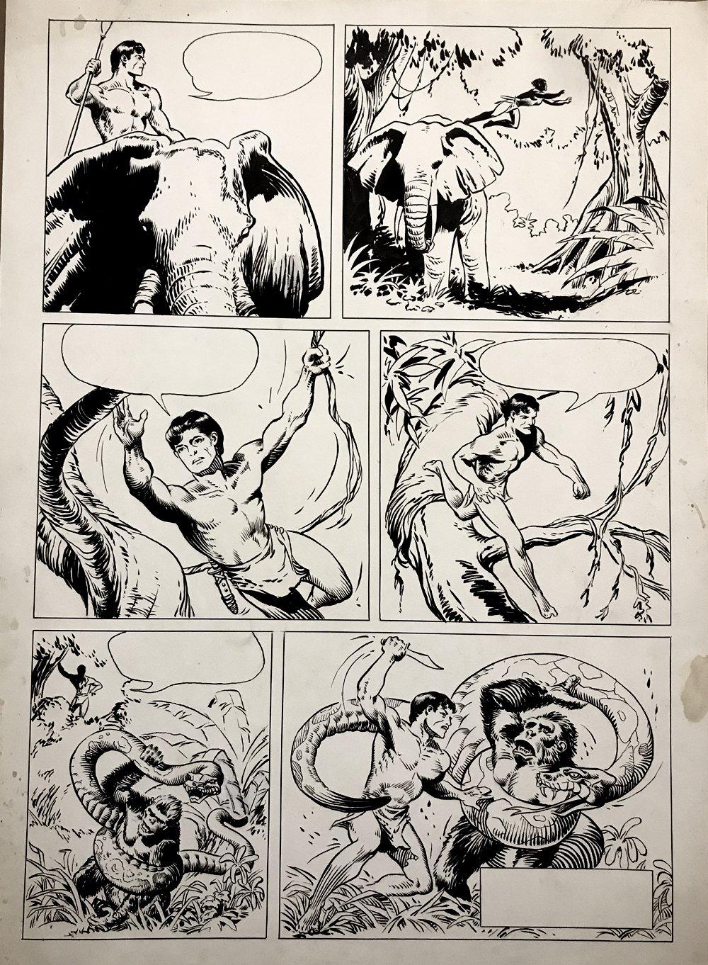 TARZAN Battles Giant Snake, Very Large Study On Huge Board! (Early 1950s)
