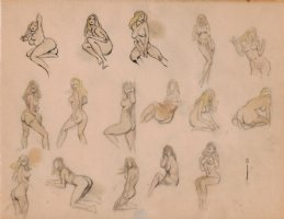 16 NUDE Female Drawing Poses Comic Art