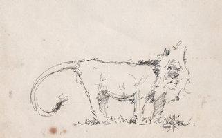 Lion Ink Drawing (1960s) Comic Art