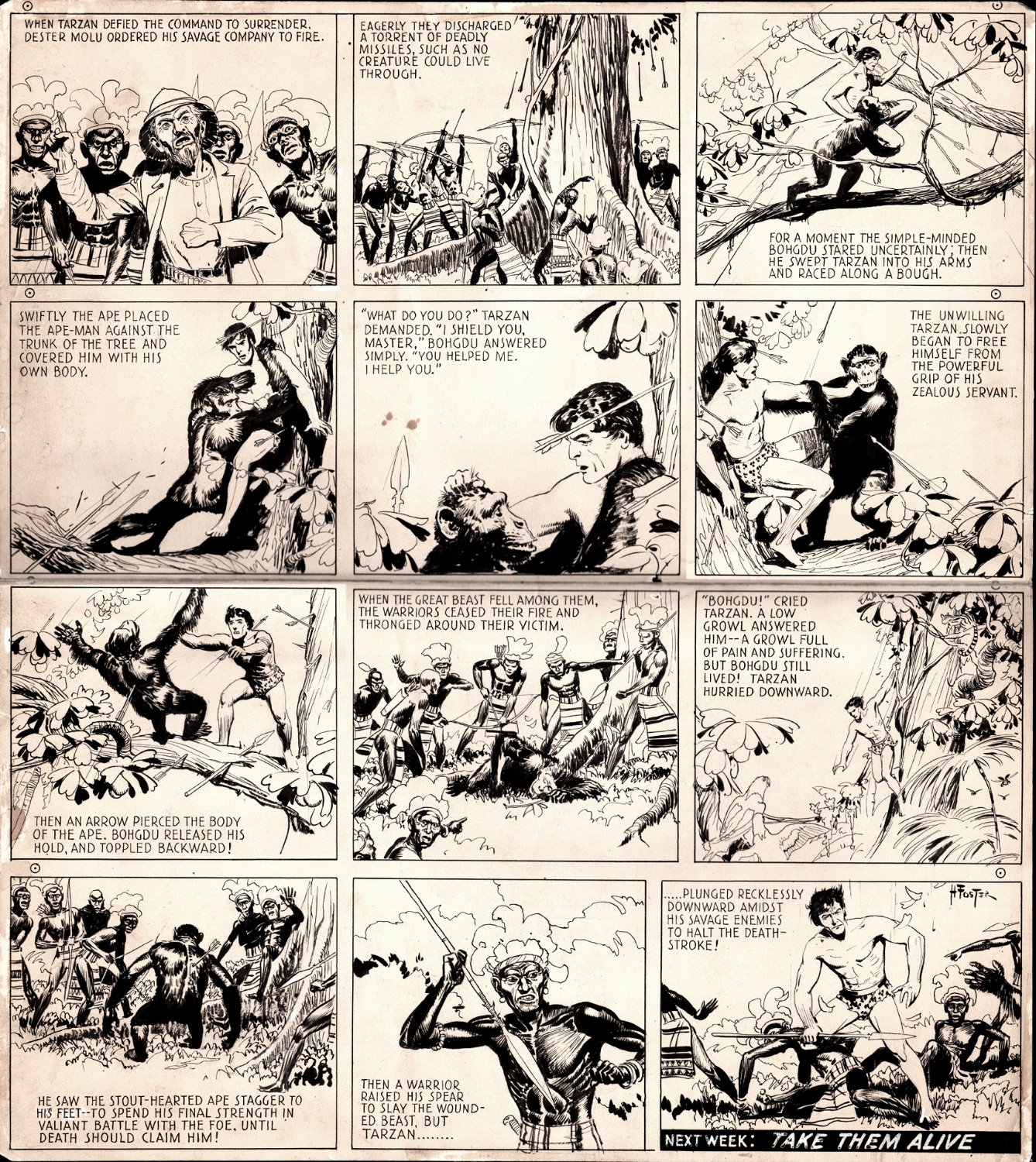 TARZAN Vintage Sunday Strip - January 6, 1935 (Large)