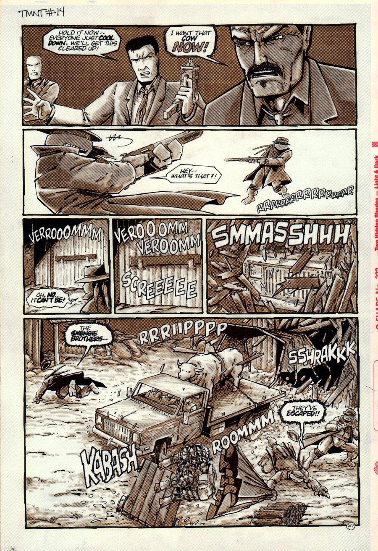 Teenage Mutant Ninja Turtles #14 p 27 (1987)