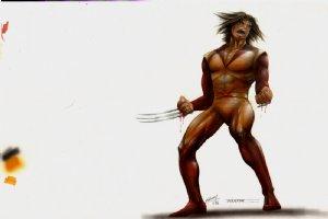 WOLVERINE X-Men #1 Movie Original Concept Art  Comic Art