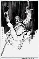 Avengers #1 Cover and Poster Art (Spider-Man) 2010 Comic Art