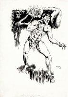 Collector's Showcase Tarzan Fanzine Cover (1969) Comic Art